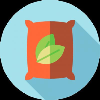 nogal vivero de plantas