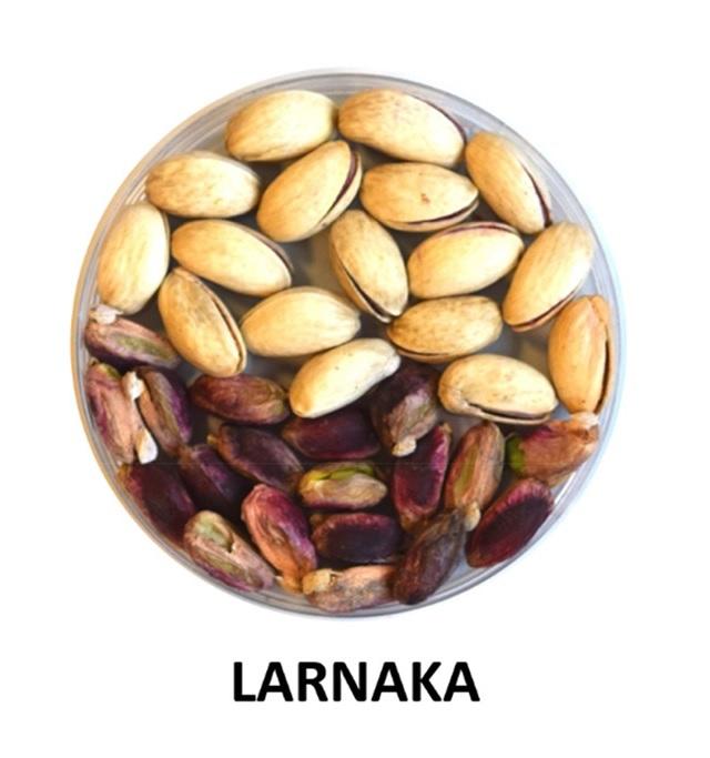 vivero pistacho extremadura castilla la mancha LARNAKA